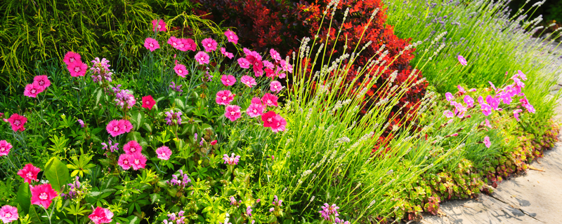Get customized landscaping