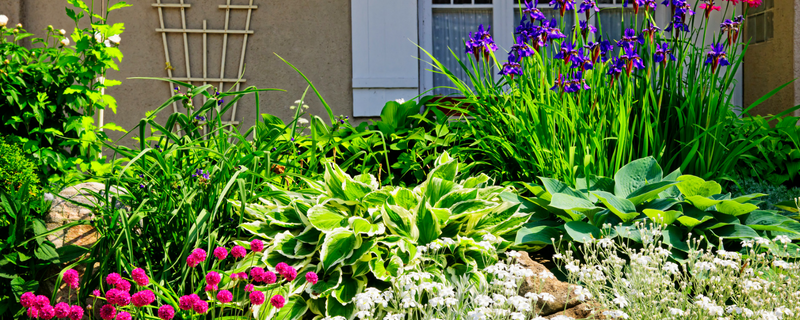 Get beautiful landscaping at a